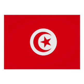 Tunisia National World Flag Poster