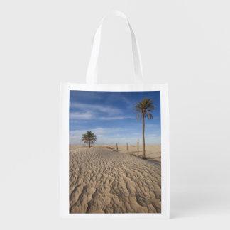 Tunisia, Sahara Desert, Douz, Great Dune, dawn