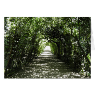 Tunnel of Green Card