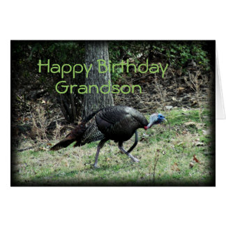 Turkey 6332-1  customize any occasion card