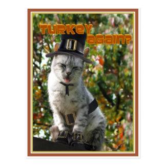 TURKEY AGAIN? Pilgrim Cat Postcard
