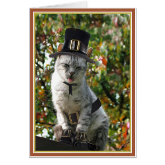 TURKEY AGAIN? Thanksgiving Pilgrim Cat Card