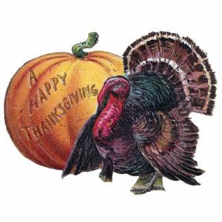 Turkey and Pumpkin Vintage Thanksgiving Photo Cutout