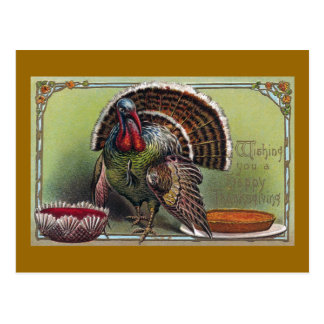 Turkey, Cranberry Sauce & Pumpkin Pie Thanksgiving Postcard