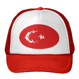 Turkey Gnarly Flag Hat