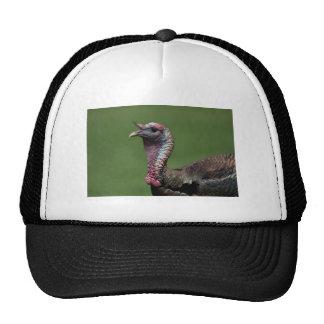 Turkey Mesh Hat