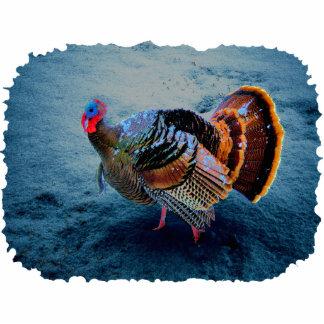 Turkey in Snow 3 Photo Sculpture Key Ring