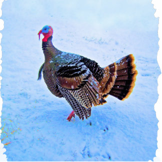 Turkey in Snow 5 Photo Sculpture Key Ring