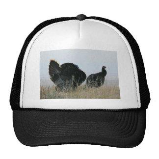 Turkey Pair Mesh Hat