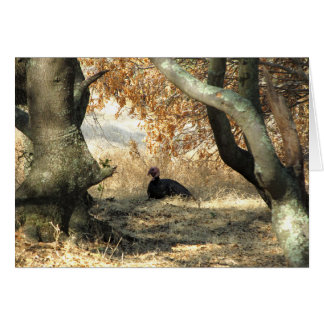 Turkey Paradise Blank Note Card