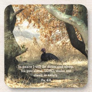 Turkey Paraside Psalm Coasters