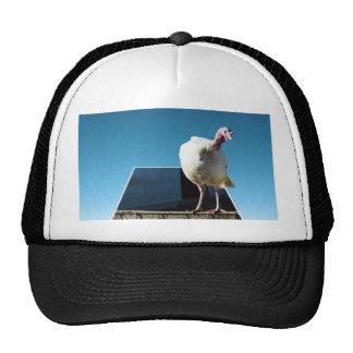 Turkey Popout Art, Cap