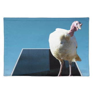 Turkey Popout Art, Placemat
