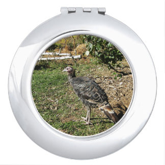 Turkey Standing In The Sun Compact Mirror