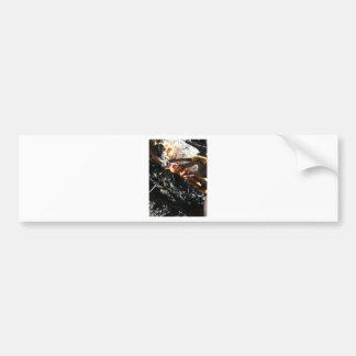 Turkey Tails Bumper Sticker