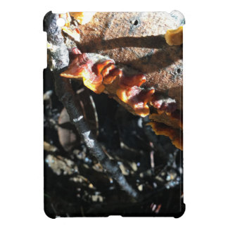 Turkey Tails Cover For The iPad Mini