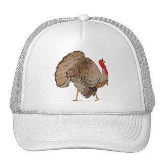 TURKEY Thanksgiving 2009 Mesh Hat