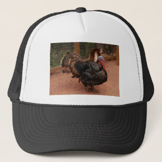 turkey, thanksgiving trucker hat
