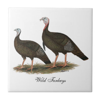 Turkeys Eastern Wild Pair Tile