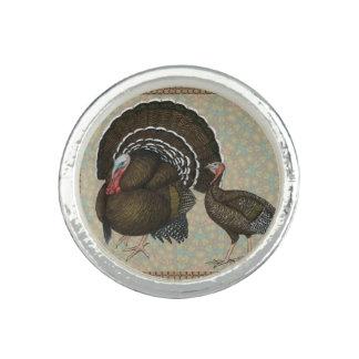 Turkeys Standard Bronze Portrait