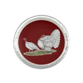 Turkeys White Holland