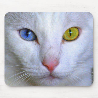 Turkish Angora Mousepad