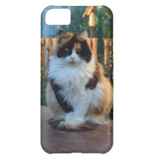 Turkish Van iPhone 5C Cases