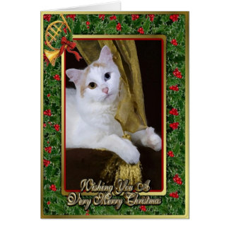 Turkish Van Cat Blank Christmas Card