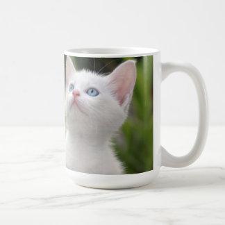 Turkish White Kitten (2.5 Months Old ) Coffee Mug