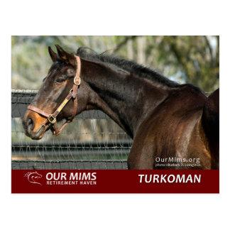 Turkoman postcard