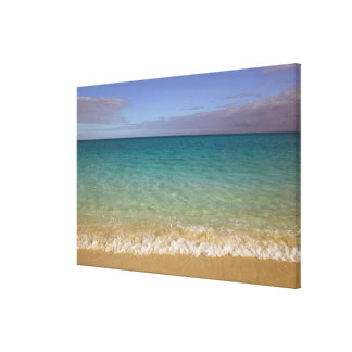 Turks and Caicos, Providenciales Island, Grace 2 Canvas Prints