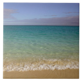 Turks and Caicos, Providenciales Island, Grace 2 Large Square Tile