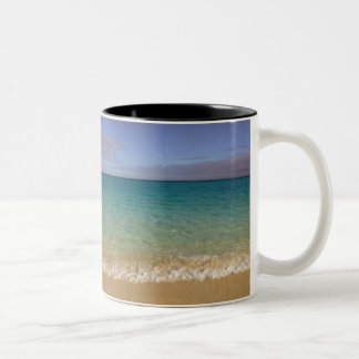 Turks and Caicos, Providenciales Island, Grace 2 Two-Tone Mug