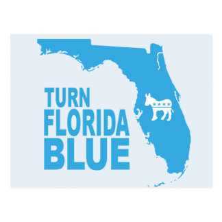 Turn Florida Blue Postcard | State Democrat