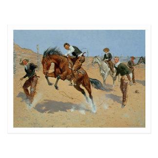 Turn Him Loose, Bill, c.1893 (oil on canvas) Postcard