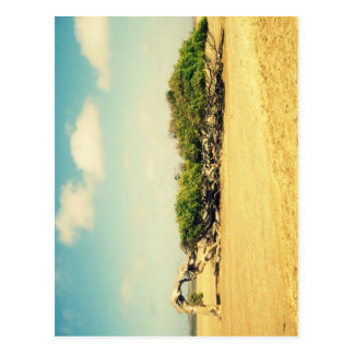 Turned tree postcard