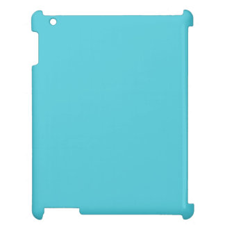Turquoise Blue Case For The iPad 2 3 4
