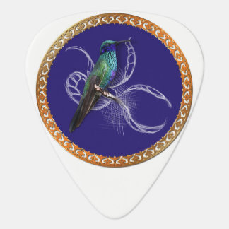 Turquoise green and blue with purple hummingbird plectrum