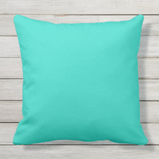 Turquoise Outdoor 20X20 Outdoor Throw Pillow