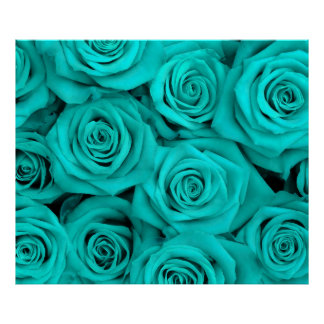 Turquoise Spectacular Roses Poster
