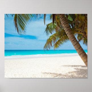Turquoise Tropical Beach Print