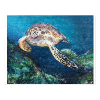 Turtle and a coral reef postcard