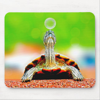 Turtle and shiyaho ゙ n ball mouse pad