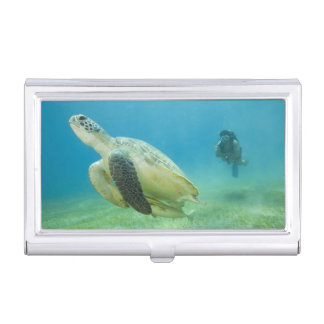 Turtle Business Card Holder