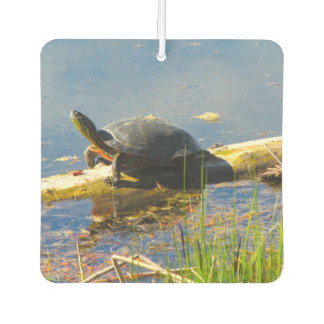 Turtle Car Air Freshener