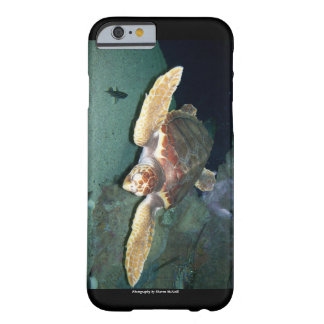 Turtle Cell Phone and Ipad case