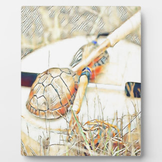 Turtle Clan Rattle and Drum Plaque