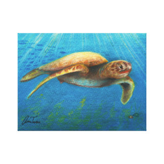 Turtle Color pencil art Canvas Print