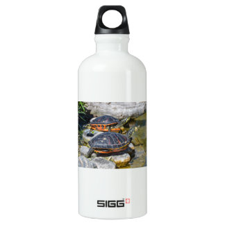 Turtle Cute Animal Office Custom Destiny Destiny'S Water Bottle