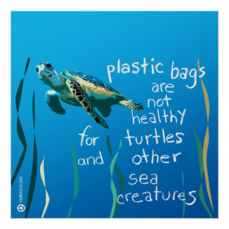 Turtle Eco Poster (Plastic bags are not healthy)